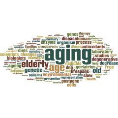 AGE003 - Aging and Ethnicity