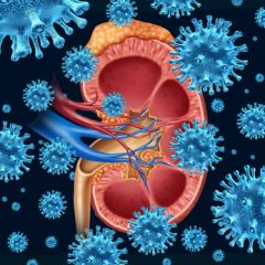 AGE013 - Aging and Chronic Kidney Disease