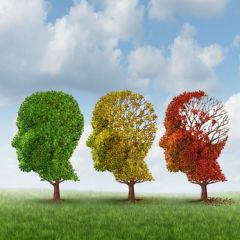 AGE005 - Overview of Alzheimer's Disease